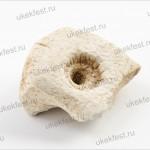 Каменная литейная форма для изготовления свинцовых грузиков-пломб.