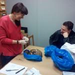 Участие в проекте «Палеоантропология и палеогенетика населения Евразии»